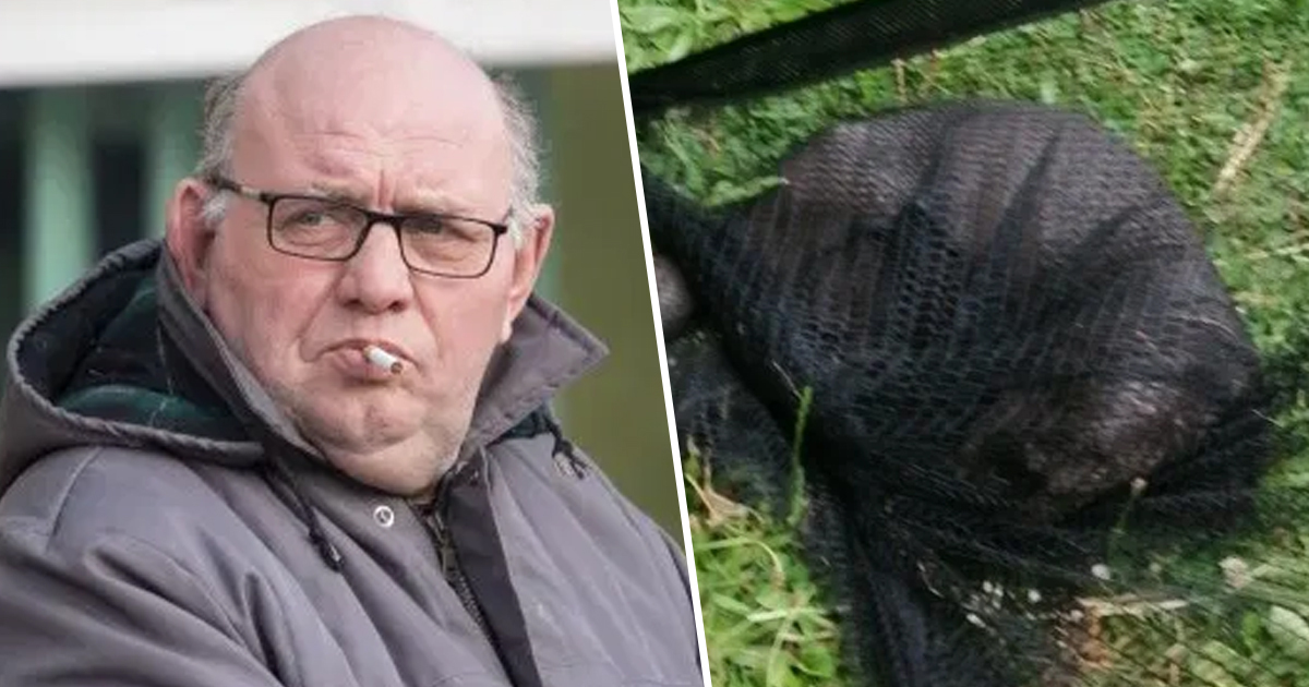 Dorset Man Jailed For Shooting Otter In Head After It Ate His £40,000 Carp