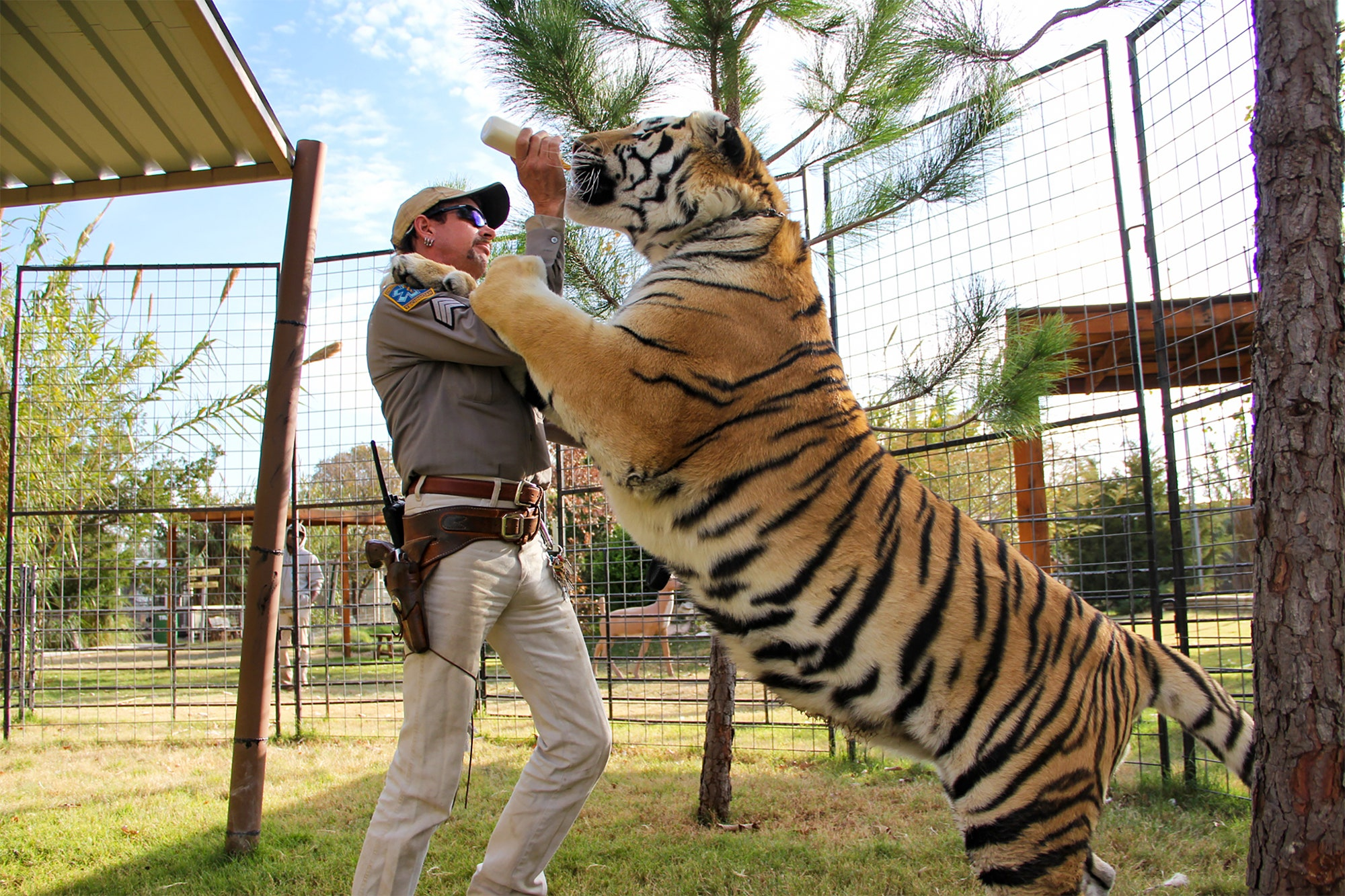 Tiger King's Joe Exotic Suing From Prison For $94 Million