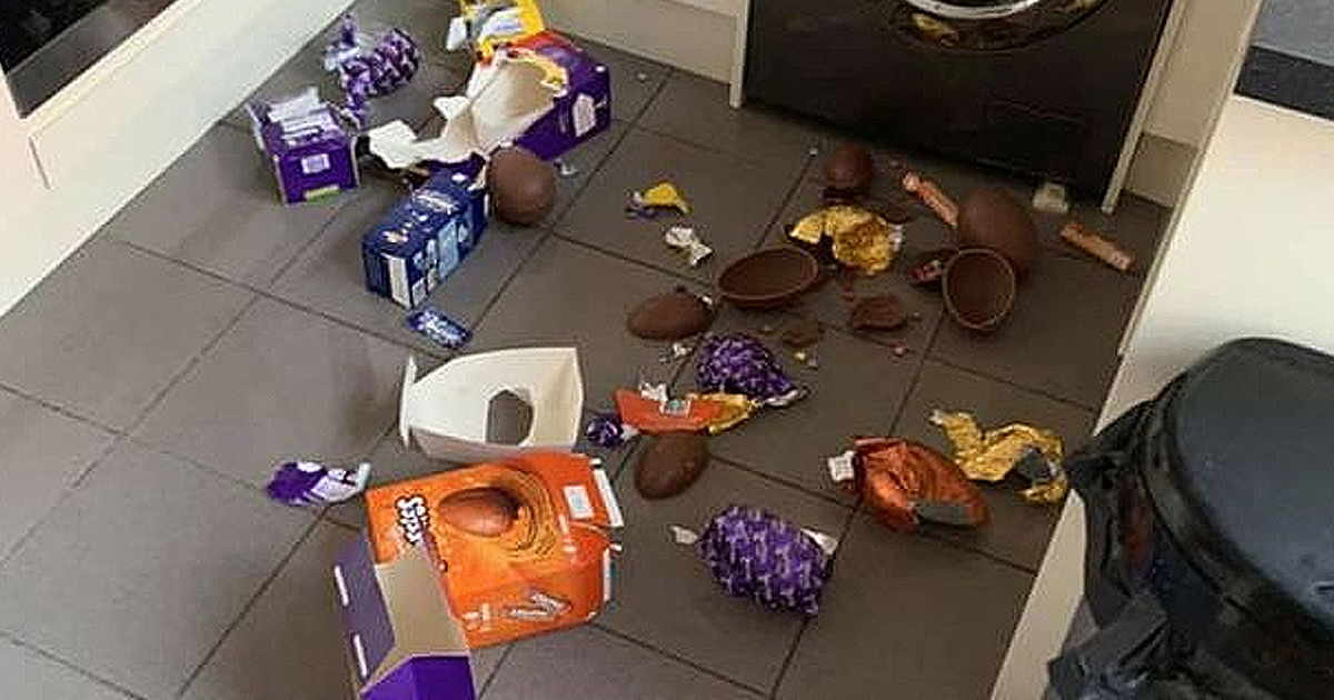 Toddler Breaks Through Baby Gates To Take Bite Out Of Every Easter Egg At Home