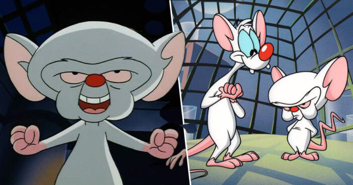 Pinky And The Brain Are Returning, Animaniacs Actor Confirms