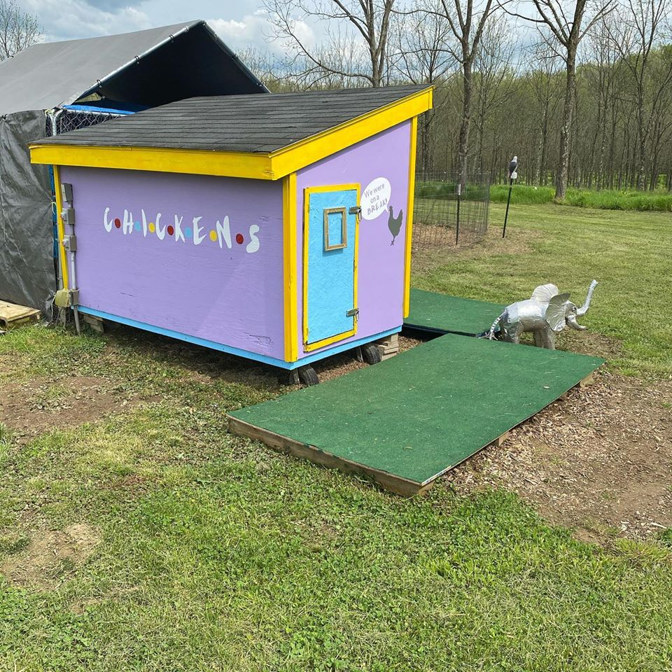 Woman makes amazing Friends-themed chicken coop