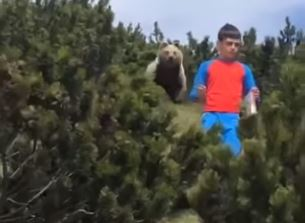 boy stalked by bear does right thing