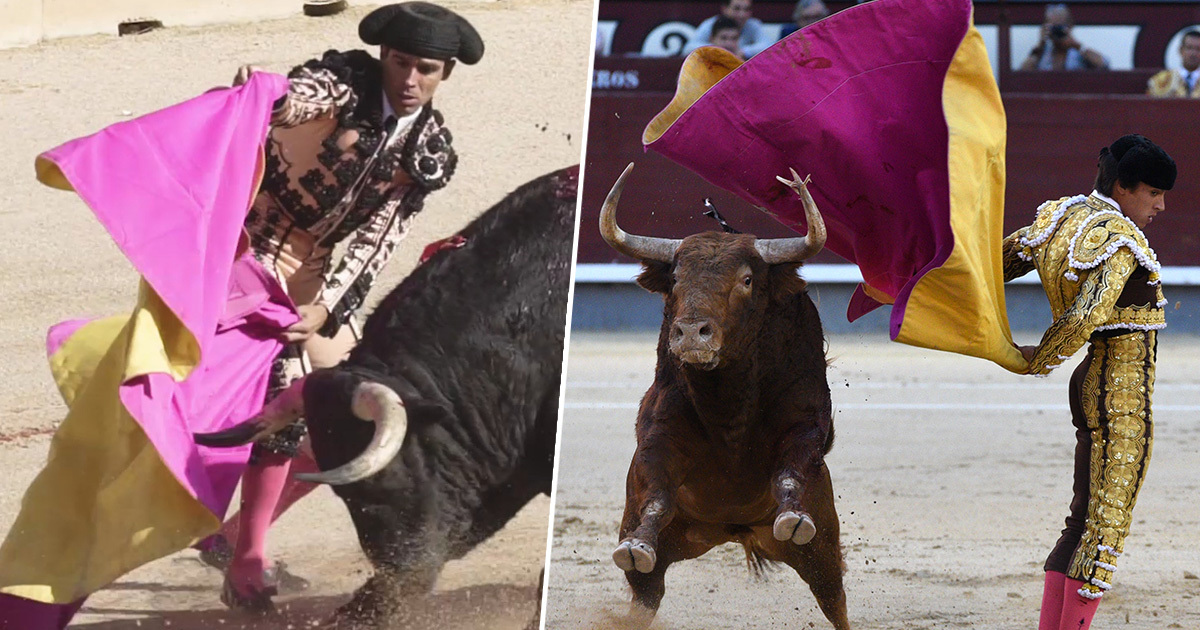 outrage over bullfighting bailout 1