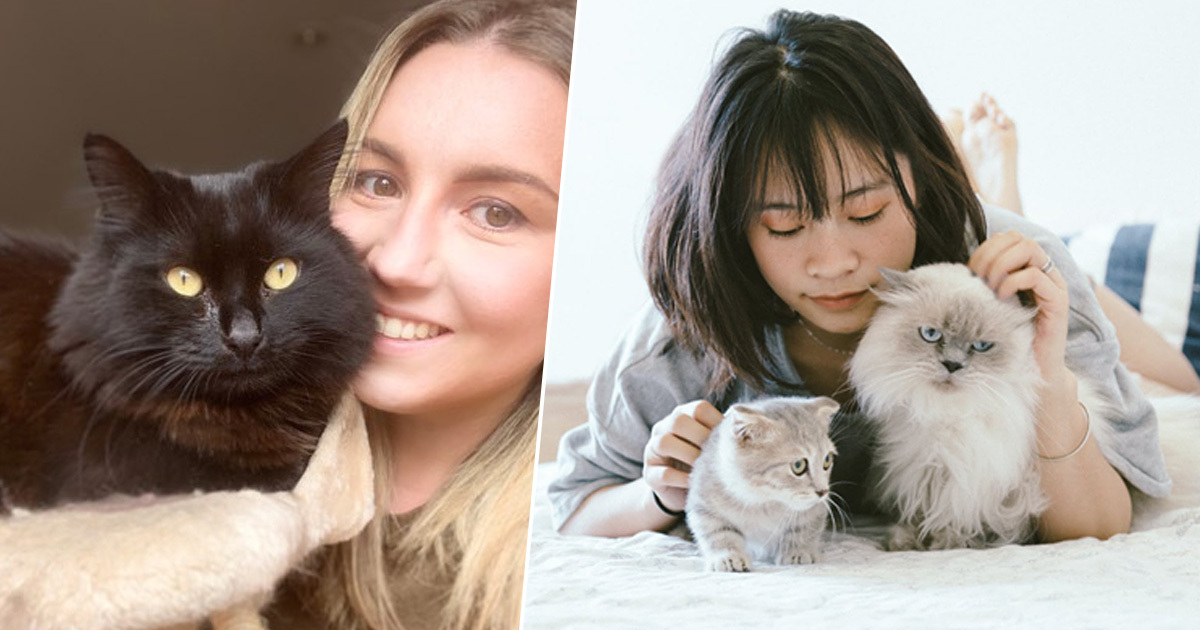 British MPs Say Lonely People Should Be Prescribed A Cat