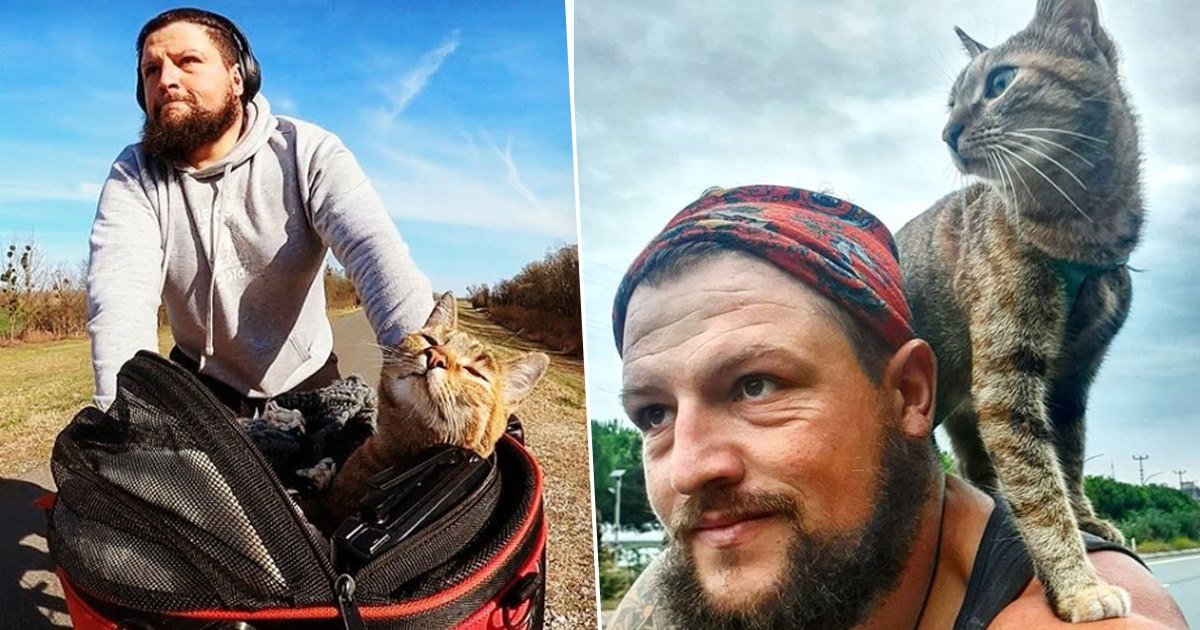 Cyclist Finds Stray Cat At Side Of The Road And Takes Her On Trip Around The World
