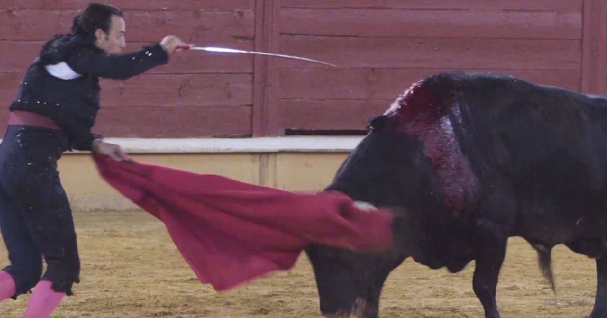 Outrage As Bullfights Return To Spain For First Time Since Lockdown