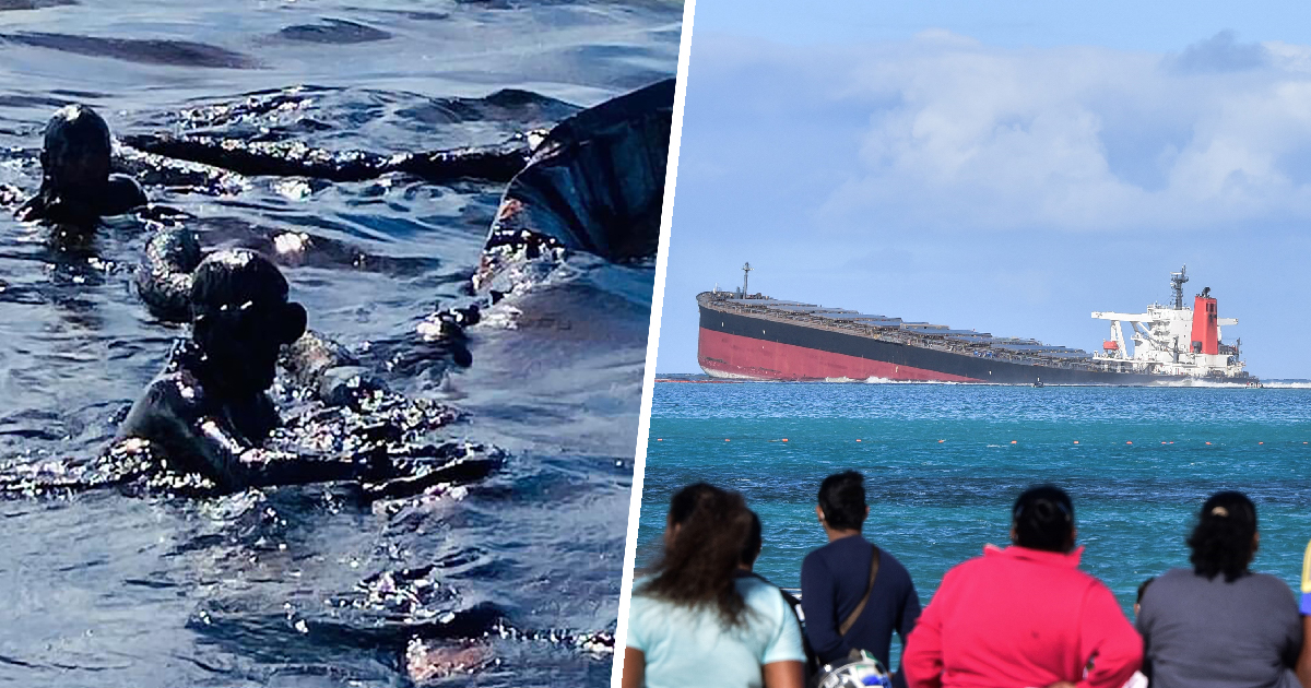 Mauritius Declares Environmental Emergency After Massive Oil Spill From Shipwreck