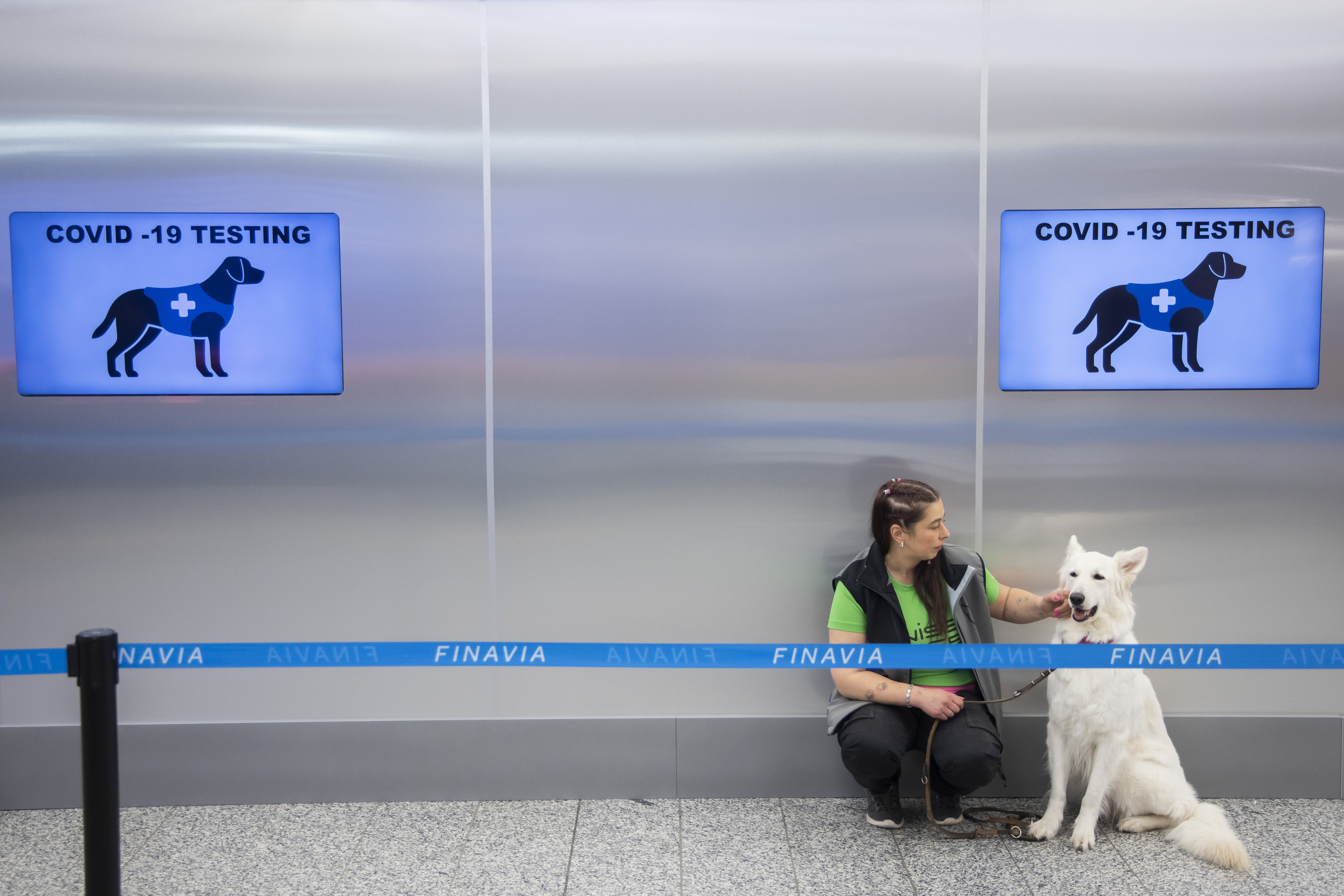 Helsinki Airport Uses Sniffer Dogs To Detect COVID-19