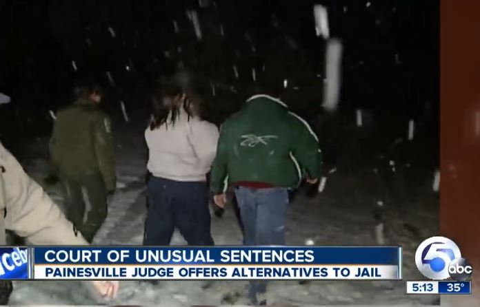 judge gives creative sentences to animal abusers