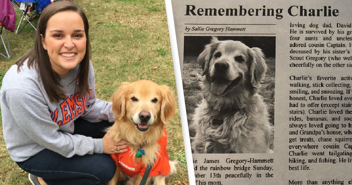 Woman's Heartbreaking Obituary For Golden Retriever Receives Thousands Of Responses