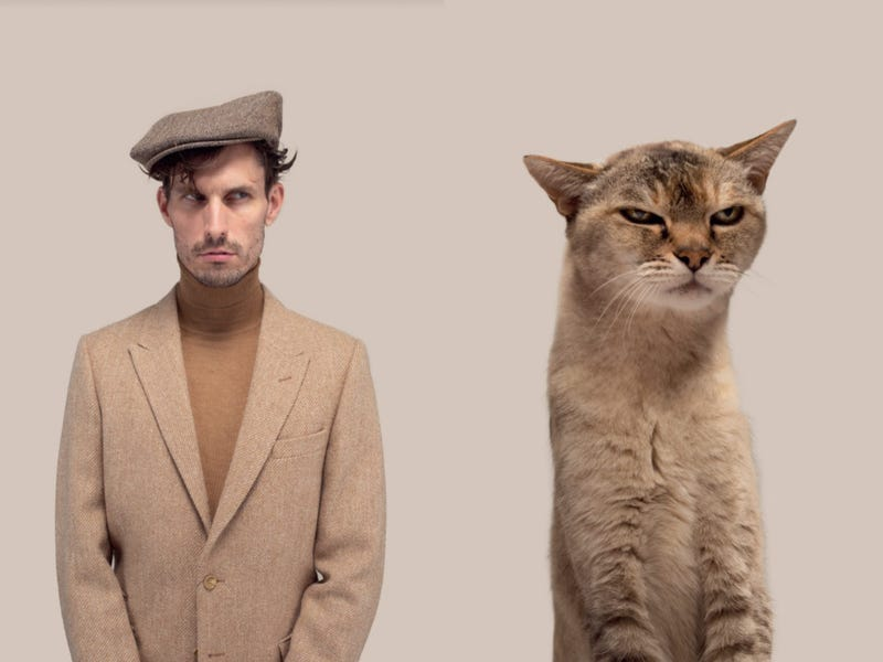 Hilarious Photos Show Eerie Similarities Between Cats And Their Owners