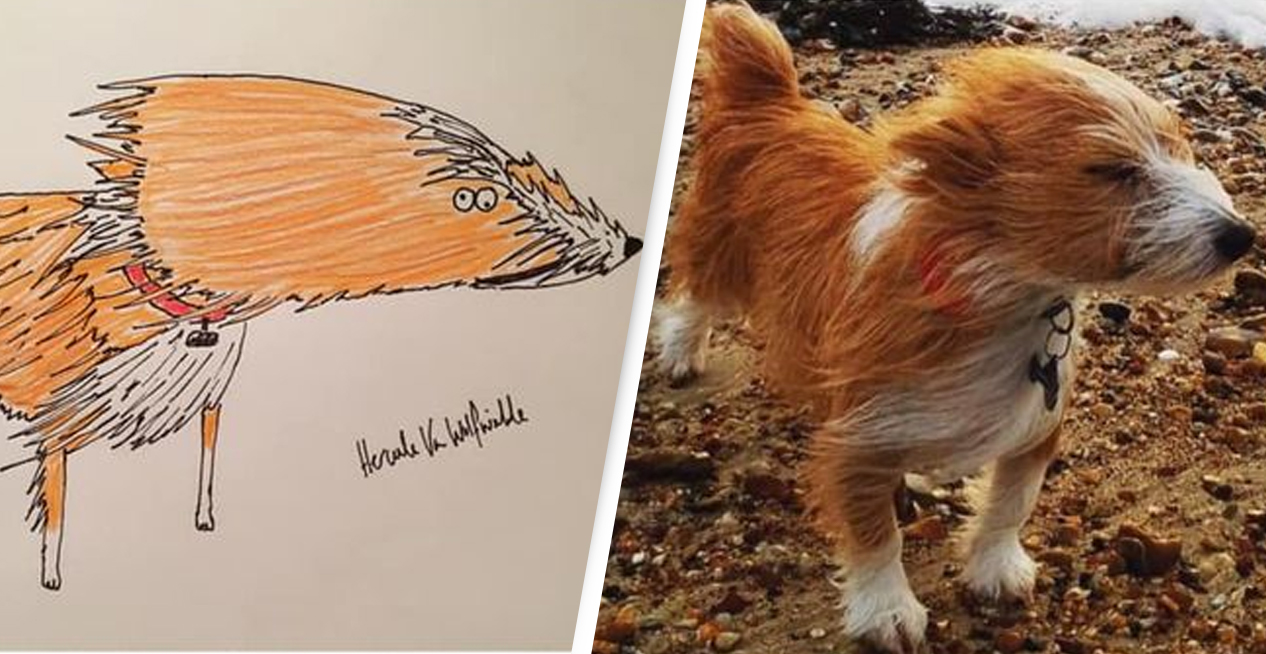 Rubbish Pet Portraits Raise Almost £8,000 For Homeless