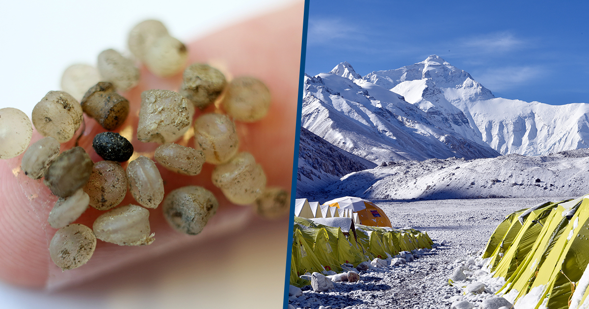 Scientists Have Found A Surprising Amount Of Microplastics On Everest