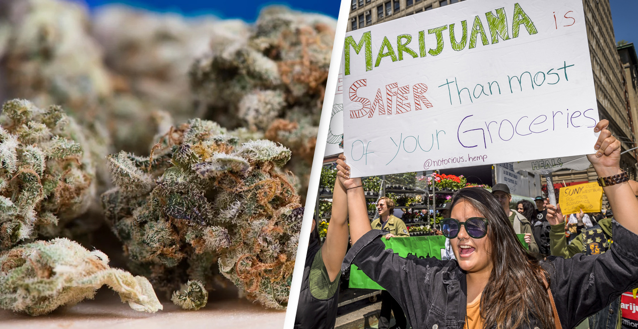 Arizona's Largest County Dismisses Marijuana Charges After State Votes To Legalise It