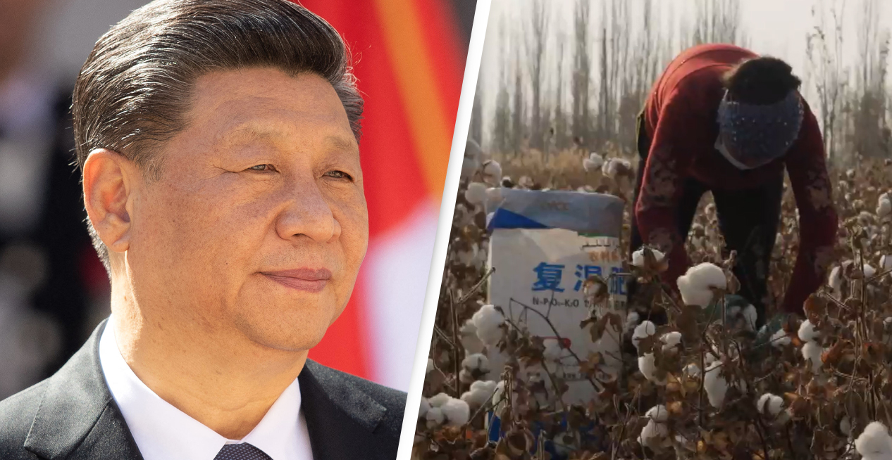 China Forcing Hundreds Of Thousands Of Minorities Into Hard Labour, BBC Confirms