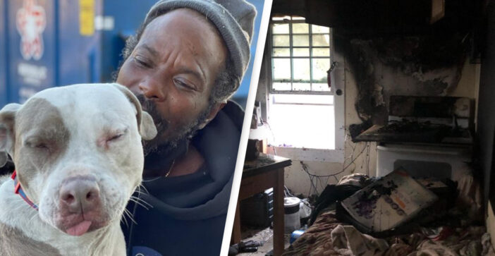 Homeless Man Rescues All Animals From A Shelter After It Catches Fire