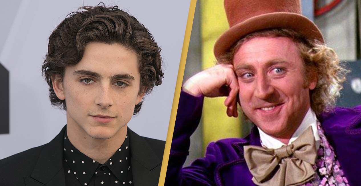 Timothée Chalamet To Play Young Willy Wonka In Origin Story