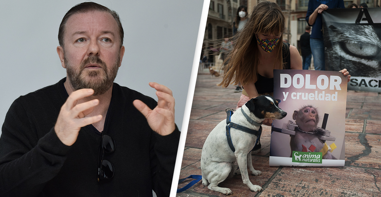 Ricky Gervais Launches Campaign To Ban Animal All Experiments